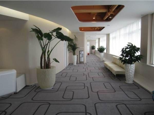 郑煤仁记体检院地毯走廊