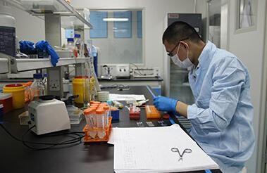 美晶基因检测中心